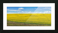 Blue Sky Picture Frame print