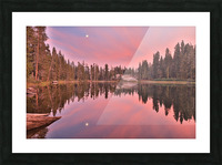 Azalea Sunset Picture Frame print