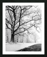 First Snowfall Picture Frame print