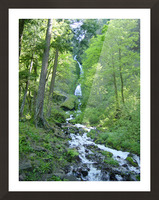 Forest Dreams Picture Frame print