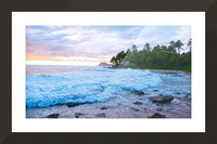 Untamed Hawaii Picture Frame print