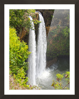 Wild Kauai - 2016 Gallery Artwork of the Year - Portrait-Natural Picture Frame print