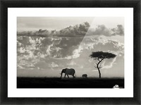 Silhouettes of Mara Picture Frame print