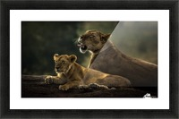 Family by suraj1007   Picture Frame print