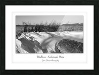 Windblown Picture Frame print