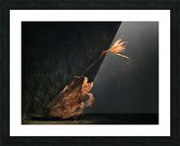 A vol doiseau Picture Frame print