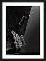 Black and white blues Picture Frame print