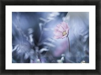 A Walk in Dreamland Picture Frame print