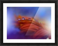 Metamorphosis by Juliana Nan  Picture Frame print