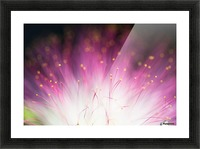 Elfin Picture Frame print