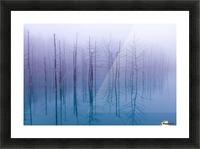 Misty Blue Pond Picture Frame print