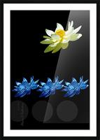 Lotus 1 Picture Frame print