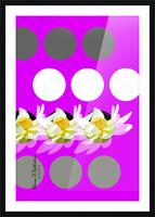 Lotus 4 Picture Frame print