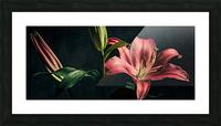 Floraison 1 Picture Frame print