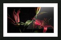 Floraison 2 Picture Frame print