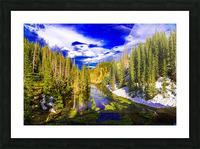 DSC00906 Picture Frame print