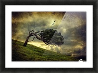 Winds of Change by Peter Elgar  Picture Frame print