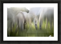 Impression by milan malovrh  Picture Frame print