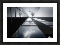 The Ethereal Flying Garden Picture Frame print