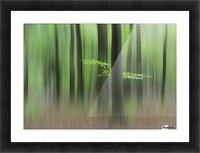 Spring Morning Picture Frame print