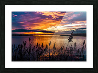Coucher Soleil Scamandre Picture Frame print