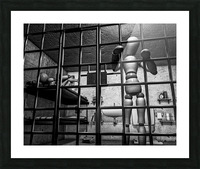 Cell Mates Picture Frame print