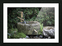Fontaine Zen Picture Frame print