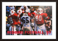 1985 Illinois State Redbirds Football Poster Picture Frame print