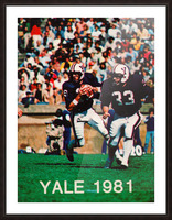 1981 Yale Bulldogs Football Poster Picture Frame print