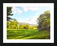 Wales in Spring Picture Frame print