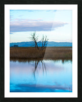 20190228 DSC 0078 2 Picture Frame print