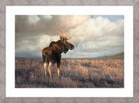20201101  DSC4194 txtr Picture Frame print