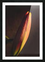 Etude Zen 3g Picture Frame print