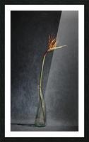 Etude Zen 3l Picture Frame print