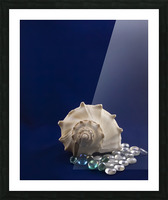 Spiral Conch Shell With Colored Glass Picture Frame print