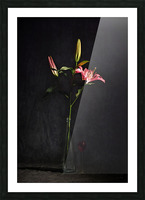 Etude Zen 4f Picture Frame print