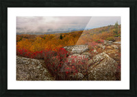 Colors of Nature apmi 1795 Picture Frame print