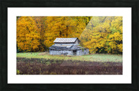 Classic Barn apmi 1888 Picture Frame print