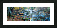 Cowanshannock Creek apmi 1982 Picture Frame print