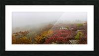 Hurricane Delta apmi 1800 Picture Frame print