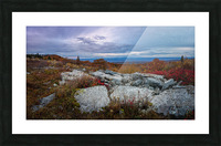 The Colors of Nature apmi 1780 Picture Frame print
