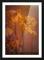 Etude Zen 7 p Picture Frame print