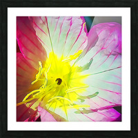 Flower Close Up Picture Frame print