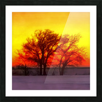 snowy evening Picture Frame print