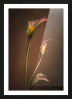 Etude Zen 8 d  Picture Frame print