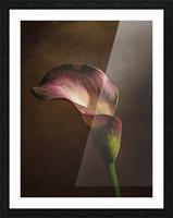 Etude Zen 8 e Picture Frame print
