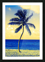 palm color 4 Picture Frame print