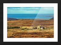 Donegal 12 Picture Frame print