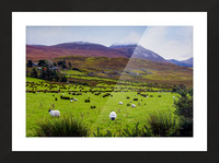 Donegal 10 Picture Frame print