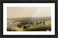Hunting Buffalo Picture Frame print
